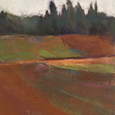 #131 Sauvie Island Fields II