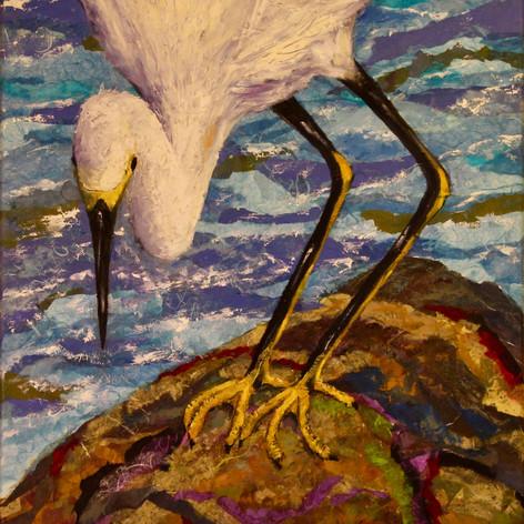 #96 Snowy Egret