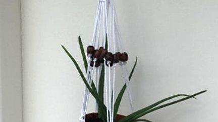 Hand-made Macrame Plant Holder - White