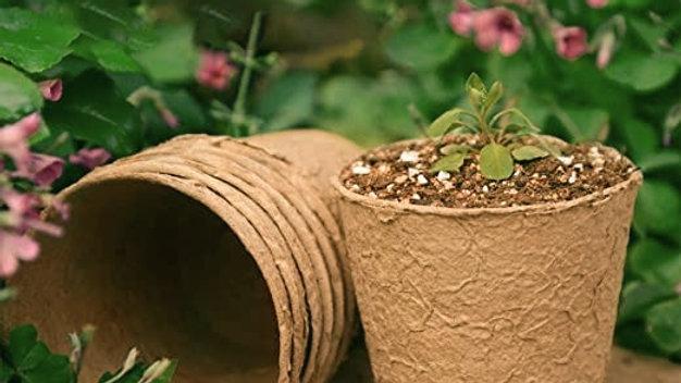 Fibre Seedling Pots 6cm X6