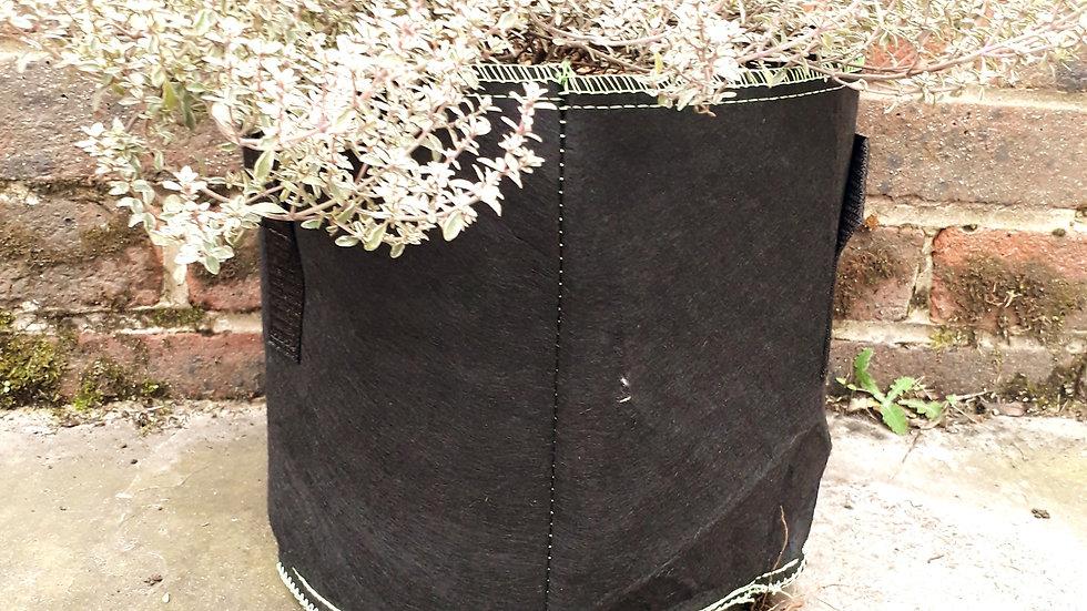 Eco Re-useable Grow Bag - 3 Gallon