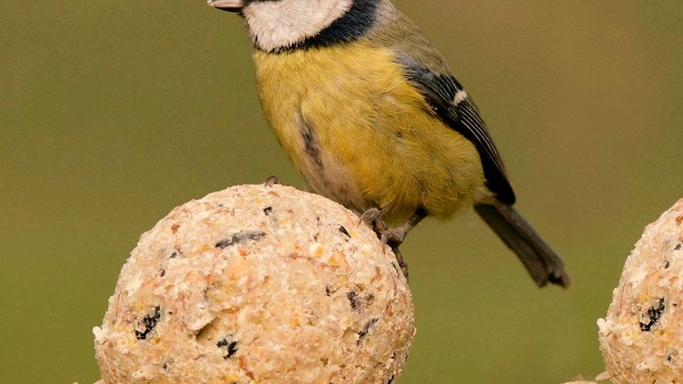 Bird Fat Balls X3
