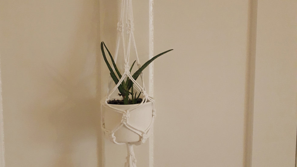 Hand-made Macrame Plant Holder- Small Plain White