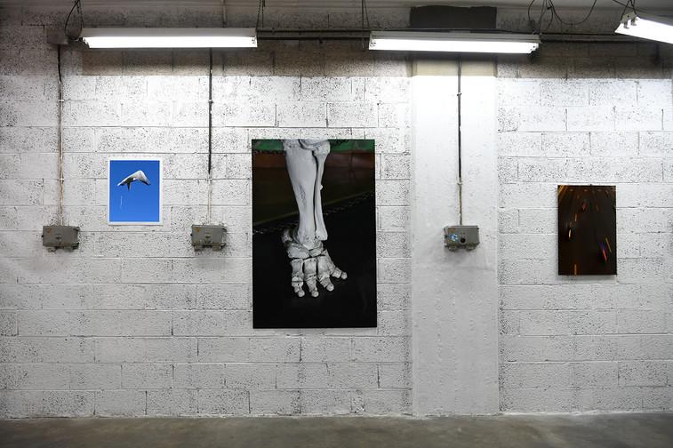 Bird Milk, exhibition view
