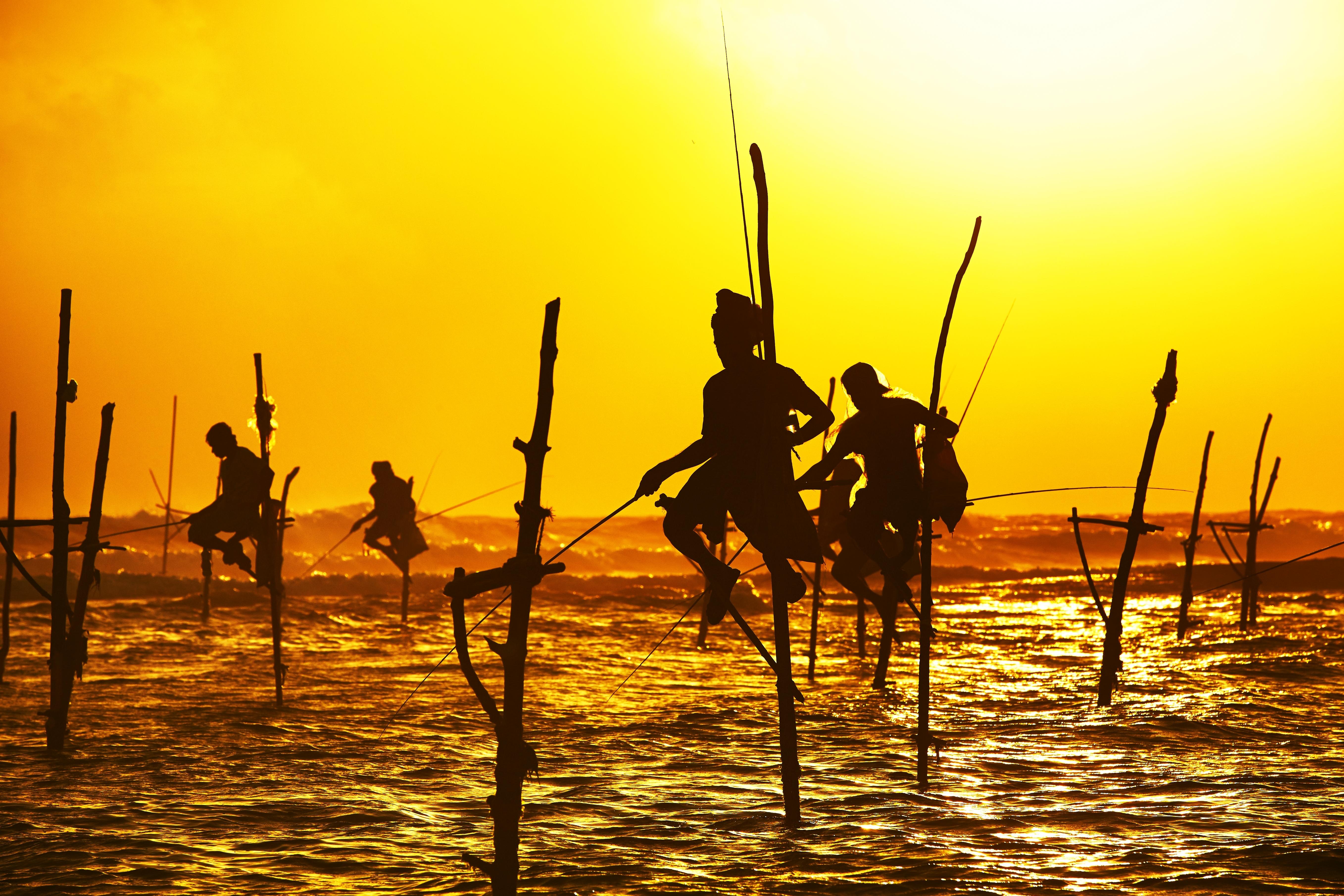 Fisherman on Stilts, Galle