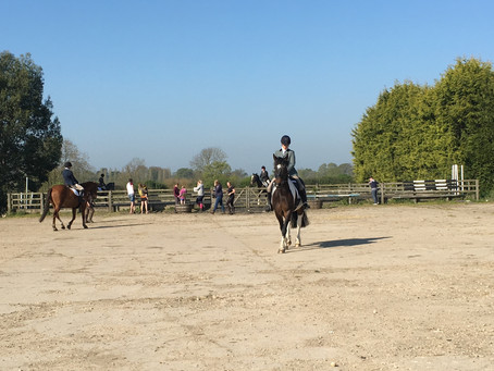 A Sunny Start to the AGDRC Summer Dressage Series