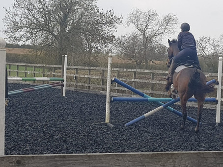 Flying High  at the Jumping Clinic