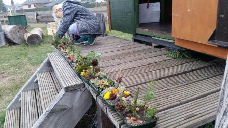 Z1 Unsere Miniaturgärten Okt.18.jpg