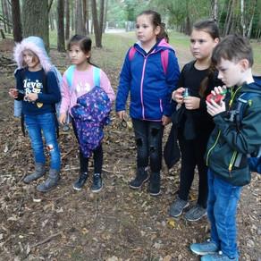 Projekttag im Naturpark Glau
