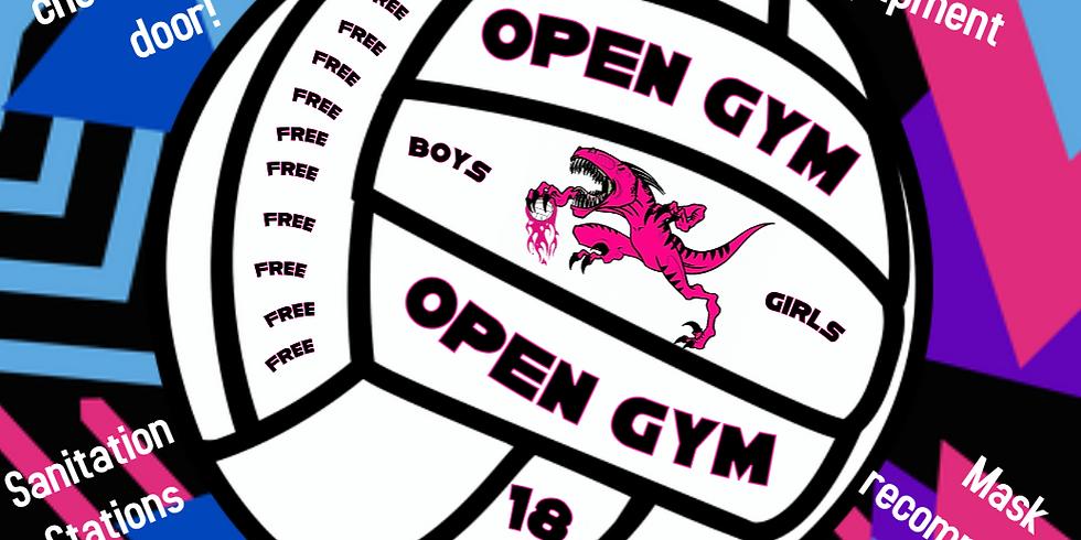 Fun Friday Open Gym!