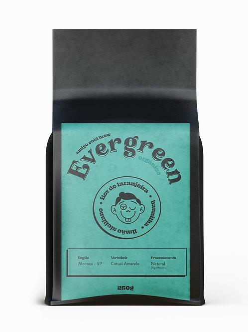 Evergreen - Cafés  Amigo Cold Brew