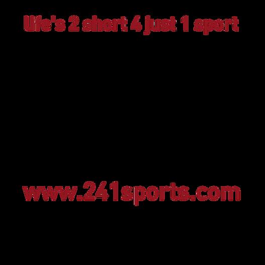 241 Transparent Logo.png