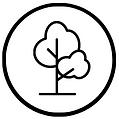 Baumpflanzintiative.png