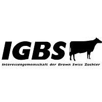 IGBS.jpg