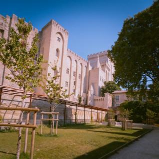 Palais des Papes back