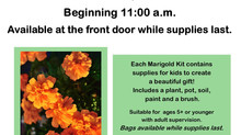 Marigold Take & Make Kit
