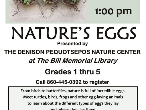 Nature's Eggs - Presented by the Denison Pequotsepos Nature Center