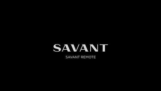 Savant Pro Remote in Action