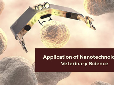 Applications of Nanotechnology in Veterinary Science
