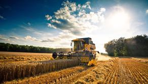 Agricoltura, proroga dei termini di presentazione per la Pac
