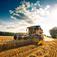 Agricoltura, in calo del -3,3% e produzione giù del -6,1