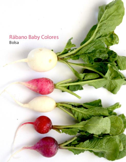 Rábanos de colores Baby