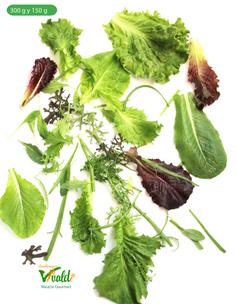 """Mezcla de lechugas y hierbas finas Gourmet """"VIVALDI"""