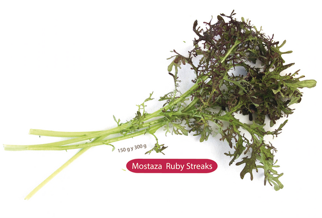Mostaza Ruby Streaks