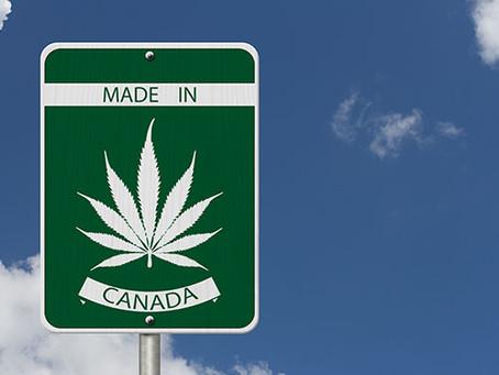 Oh Cannabis: Canada's growing marijuana industry