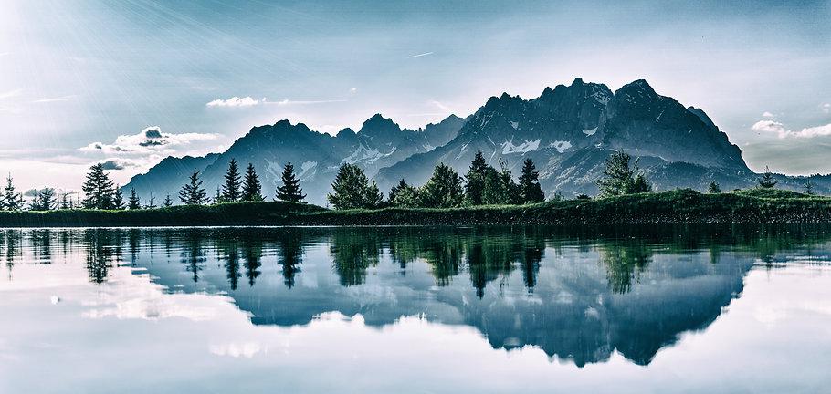 daylight-environment-forest-idyllic-4592