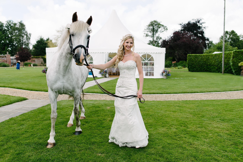 Orangery wedding horse