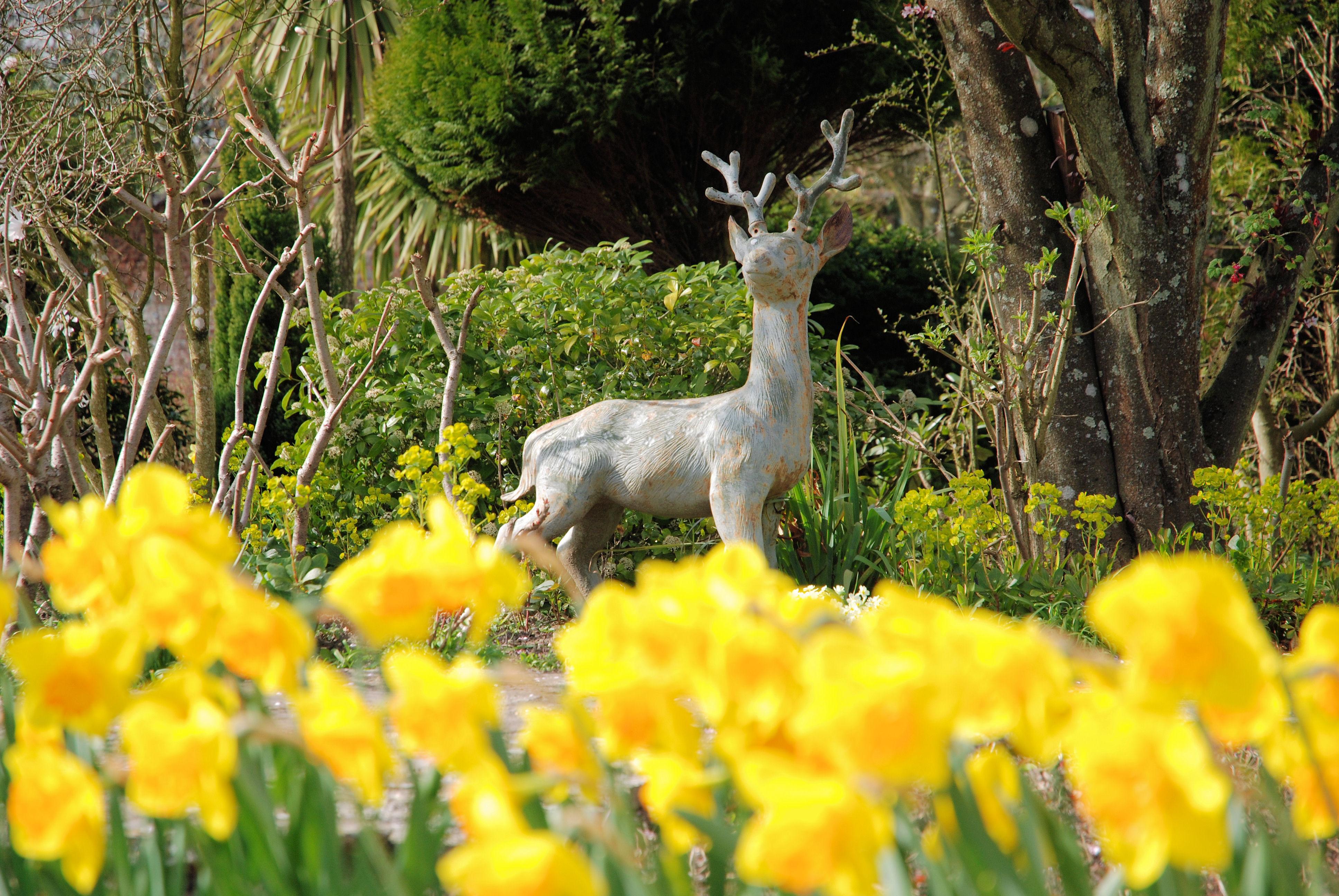 Daffodils garden statue