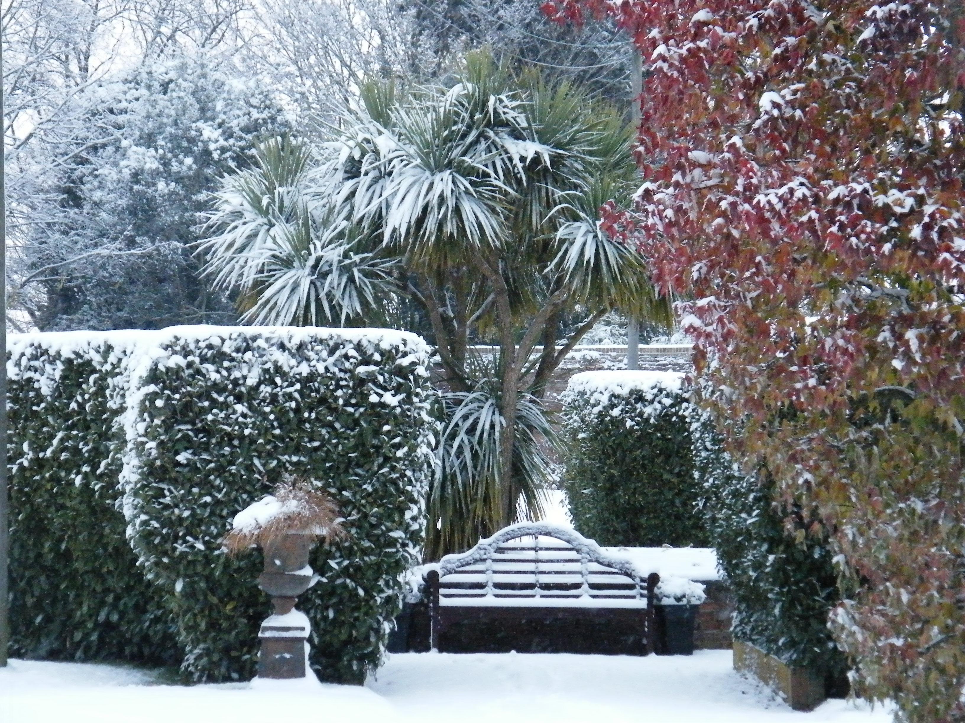 Orangery gardens snow
