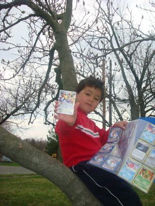 Pokemons in the climbing tree