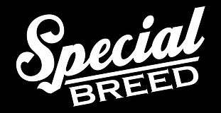 Special Breed, Lifestyle Brand and Artist Collective