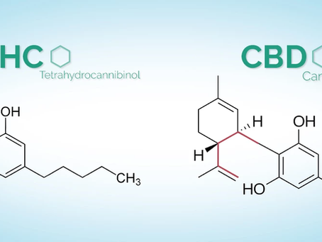 Is CBD the same as THC