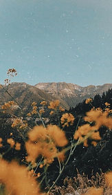 Vintage mountains.jpg