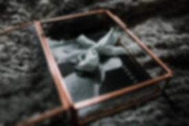 glassbox+(2+of+3).jpg