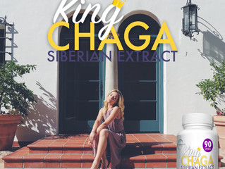 Chaga Mushrooms - Assisting You To Economize Within These Expensive Times