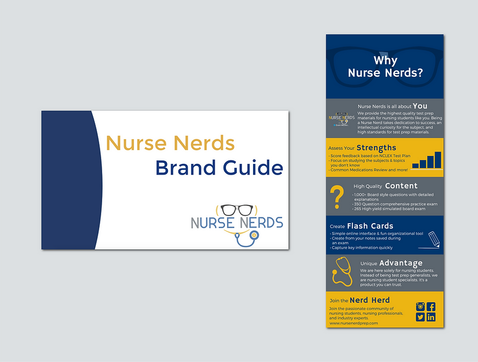 Nurse Nerds brand guide creation and infographic graphic design - Branding Services by The Alias Group