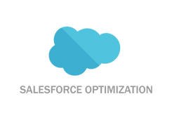 Salesforce Optimization Icon_With Text.p