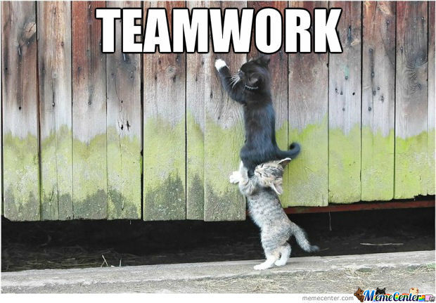 Teamwork: how to optimize your team structure