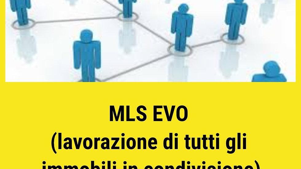 MLS EVO