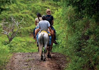 Horseback Riding Jupiter-Indiantown Nature Trail