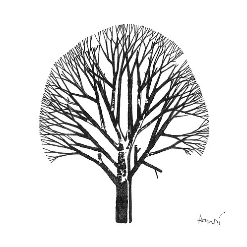 Zoltán André: Branches