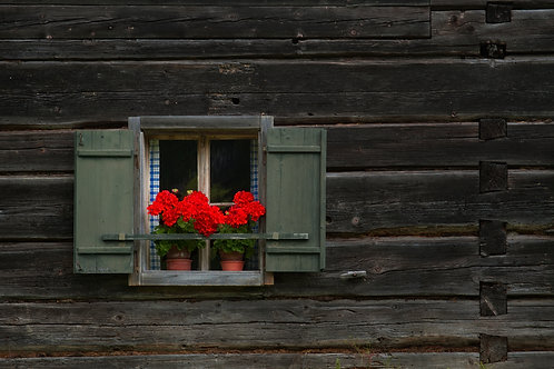 Gábor Ösz: Window