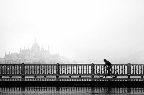 Máté Ladjánszki: Foggy Morning