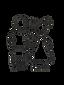 Pauletnany logo.png