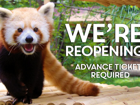 Elmwood Park Zoo WE CAN'T WAIT TO WELCOME YOU BACK BEGINNING FRIDAY, JUNE 26!