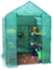 The-Greenhouse.png